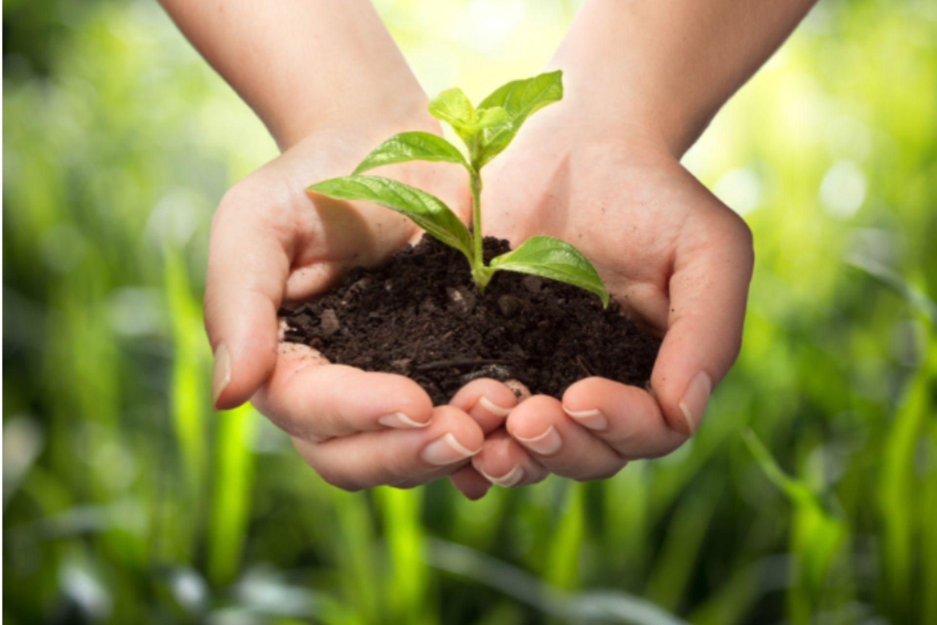 Mumbai-India-Environmental-NGO-Earth5R-Circular-Economy-sustainablity