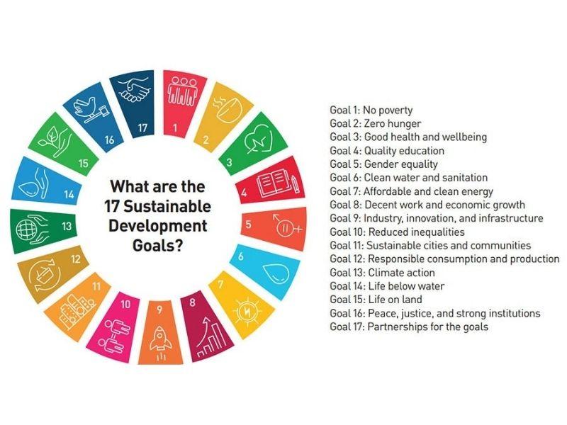 17 UN Sustainable Development Goals_ Earth5R_Mumbai_India_Environmental NGO