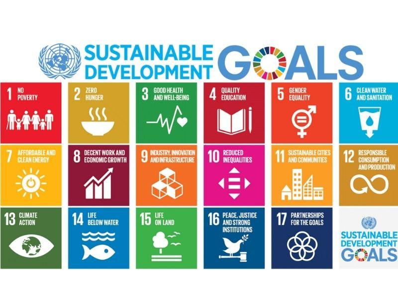 Sustainable Development Goals- Earth5R- Mumbai- Environmental NGO